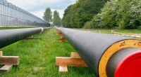Tuinders in gebied Next Garden willen biomassacentrale voor warmtenet