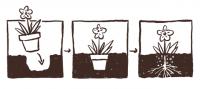 Een plantenpot die je kunt ingraven