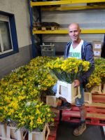 Oosterhoutse kweker zet Voedselbank in de bloemen
